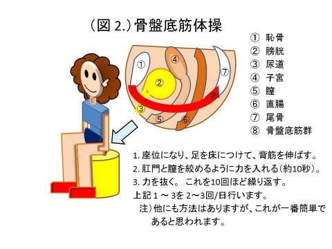 urology2