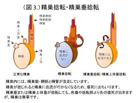 urology3